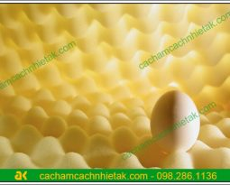 Mút trứng tiêu âm