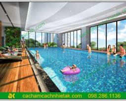 len gỗ tiêu âm với bể bơi trong nhà (2)
